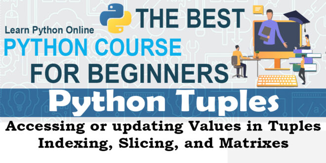 Python tuples - Accessing or updating Values in Tuples